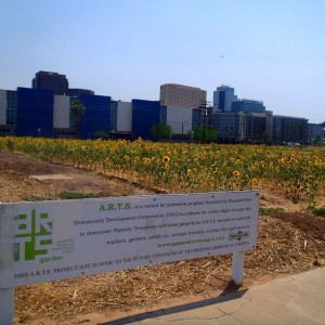 Adaptive Reuse of Temporary Spaces Project in Phoenix, Arizona at Valley of the Sunflowers
