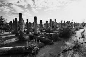 Abandoned Gopher Ordnance Works, Photo by Eric Alward