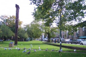 The 30-foot Totem Pole of Oppenheimer Park
