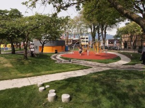 The Oppenheimer Park Redesign