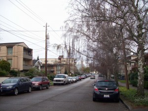 Typical Residential Street in Seattle