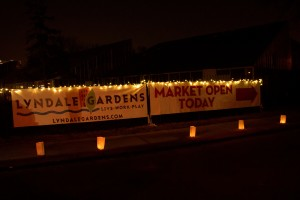 Winter Market & Festival of Lights