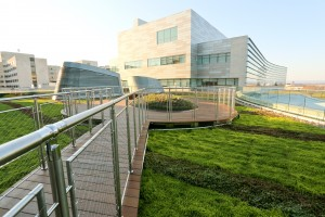 Children's Hospital Green Roofing