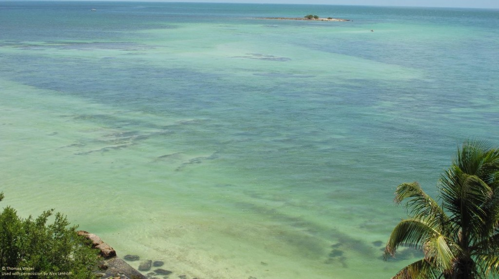 Bahia Honda Florida Environmental Conservation