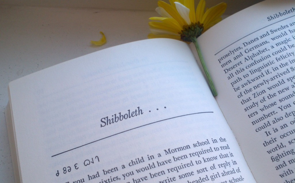 Shibboleth Chapter Page