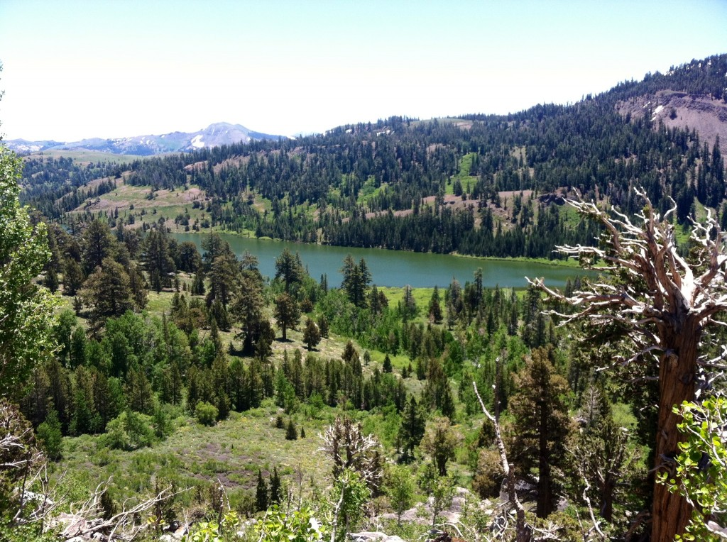 Red Lake: Sierra Nevada Range Backdrop