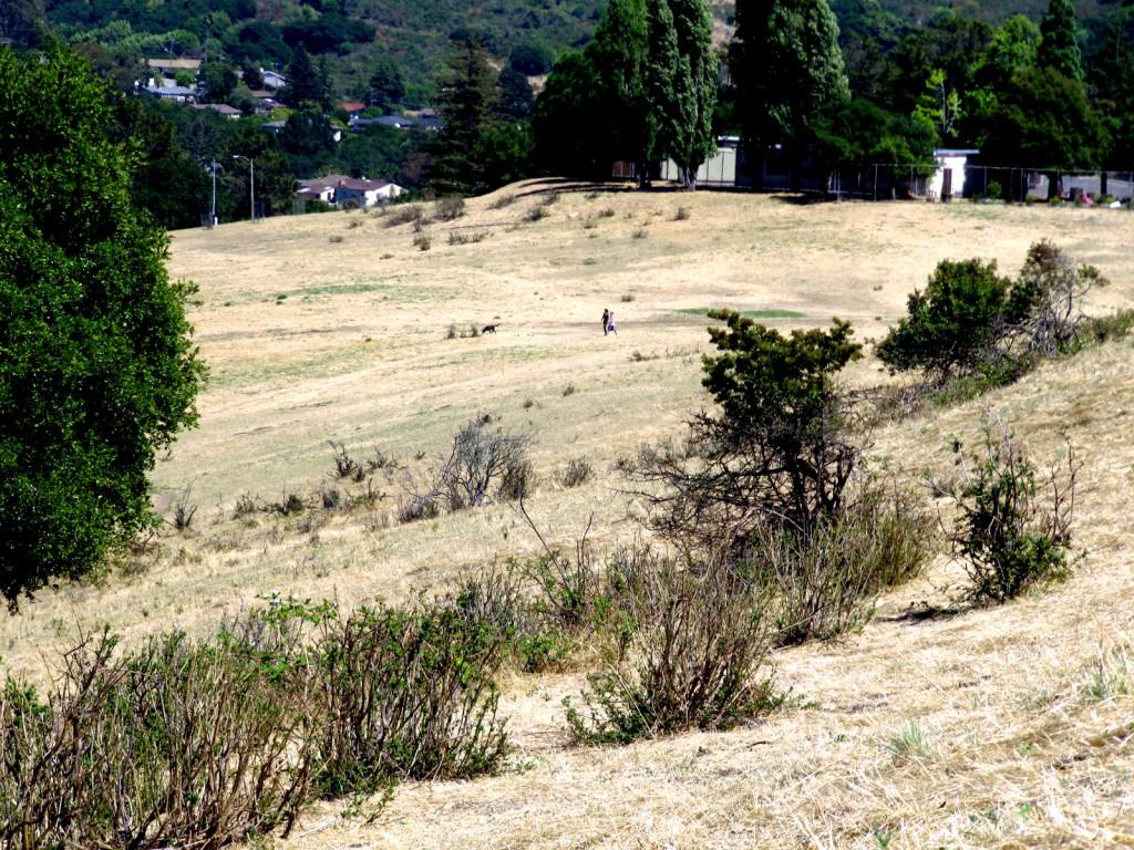 King's Estates Open Space