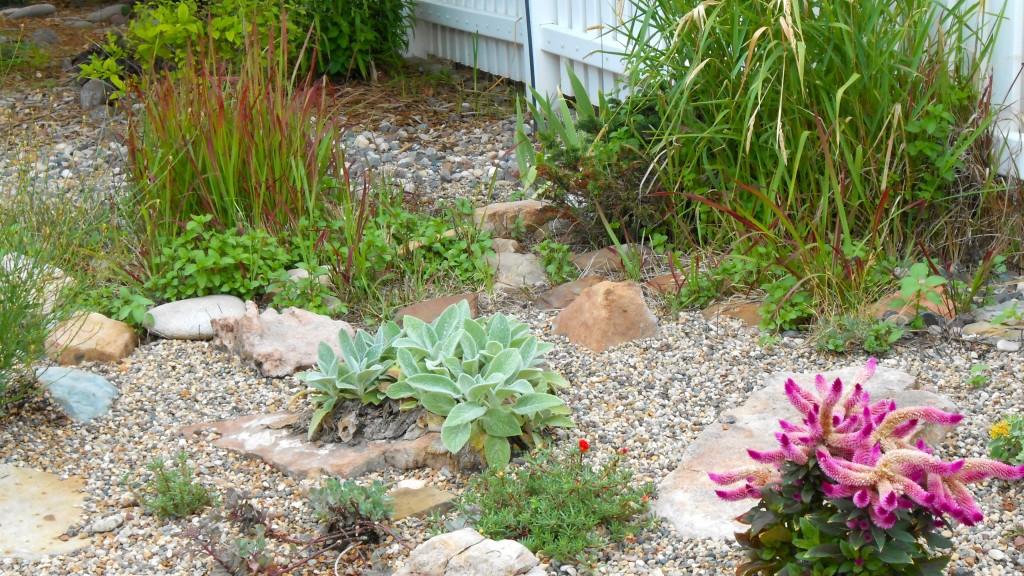 Home Garden Prairie Garden Lincoln, Nebraska