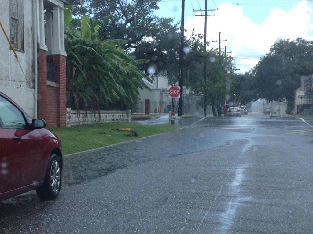 flooding from average rainstorm, new orleans, louisiana