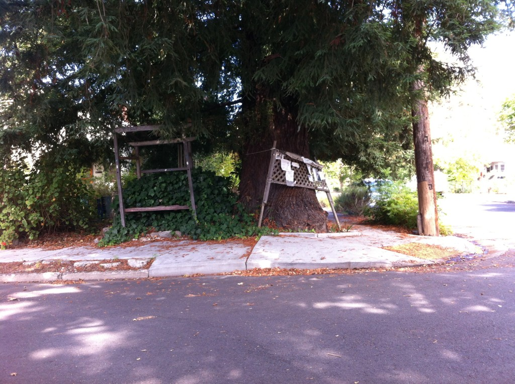 The Wright Street bench and bulletin board: Santa Rosa, CA