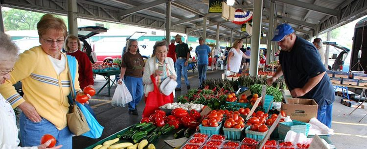 Kalamazoo, Michigan Farmer's Market