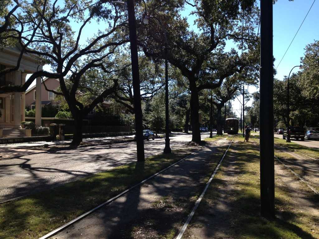 Tree Lined Street, Charles, New Orleans