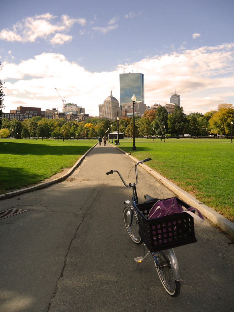 A sunny day at the Boston Common