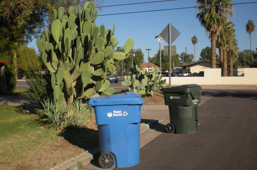 Recycling Bin, Phoenix, Arizona