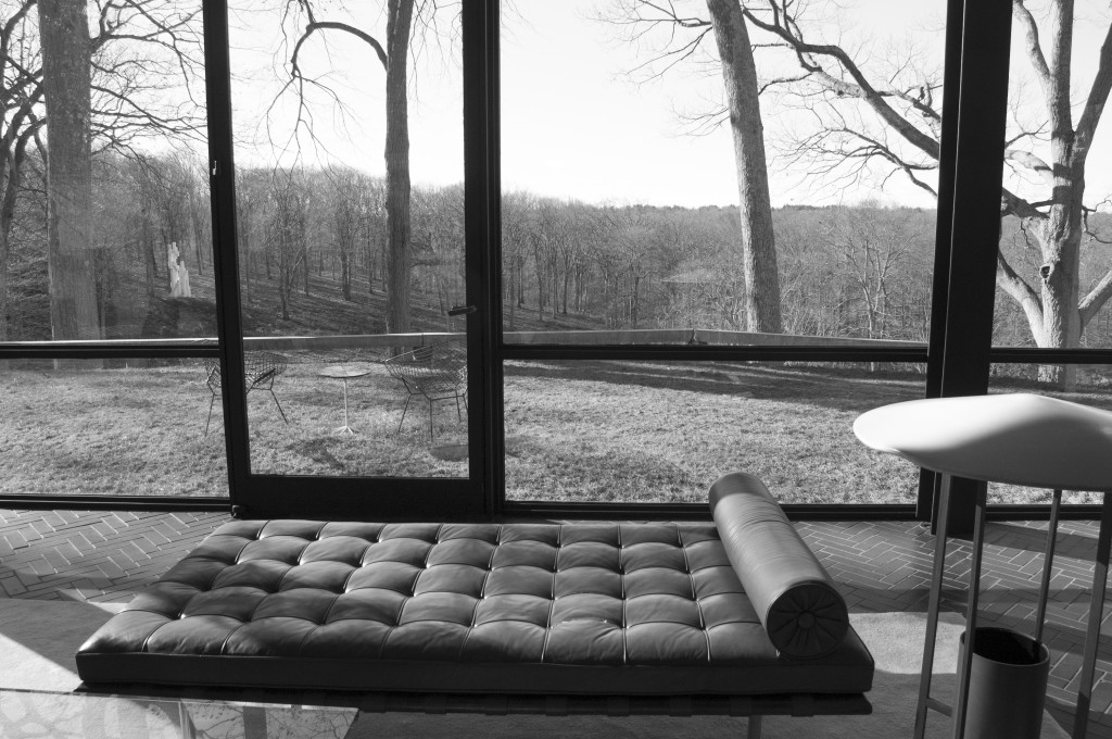 View from the Glass House's living room showing the surrounding landscape
