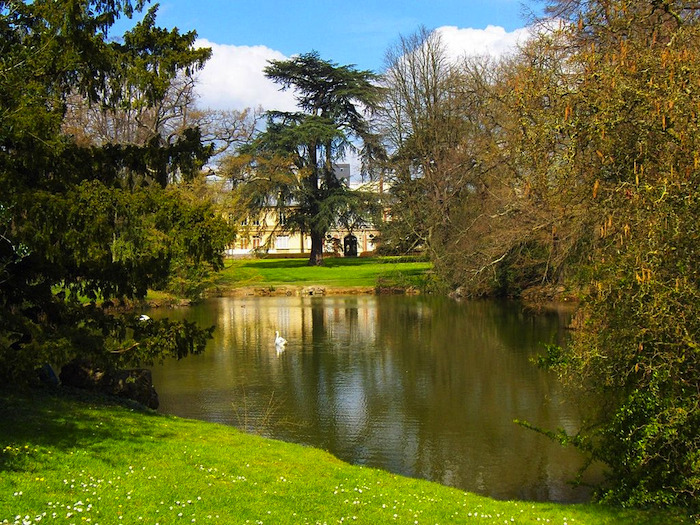 A pond in Rennes, France.