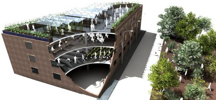 Photograph of Manchester Biospheric Project