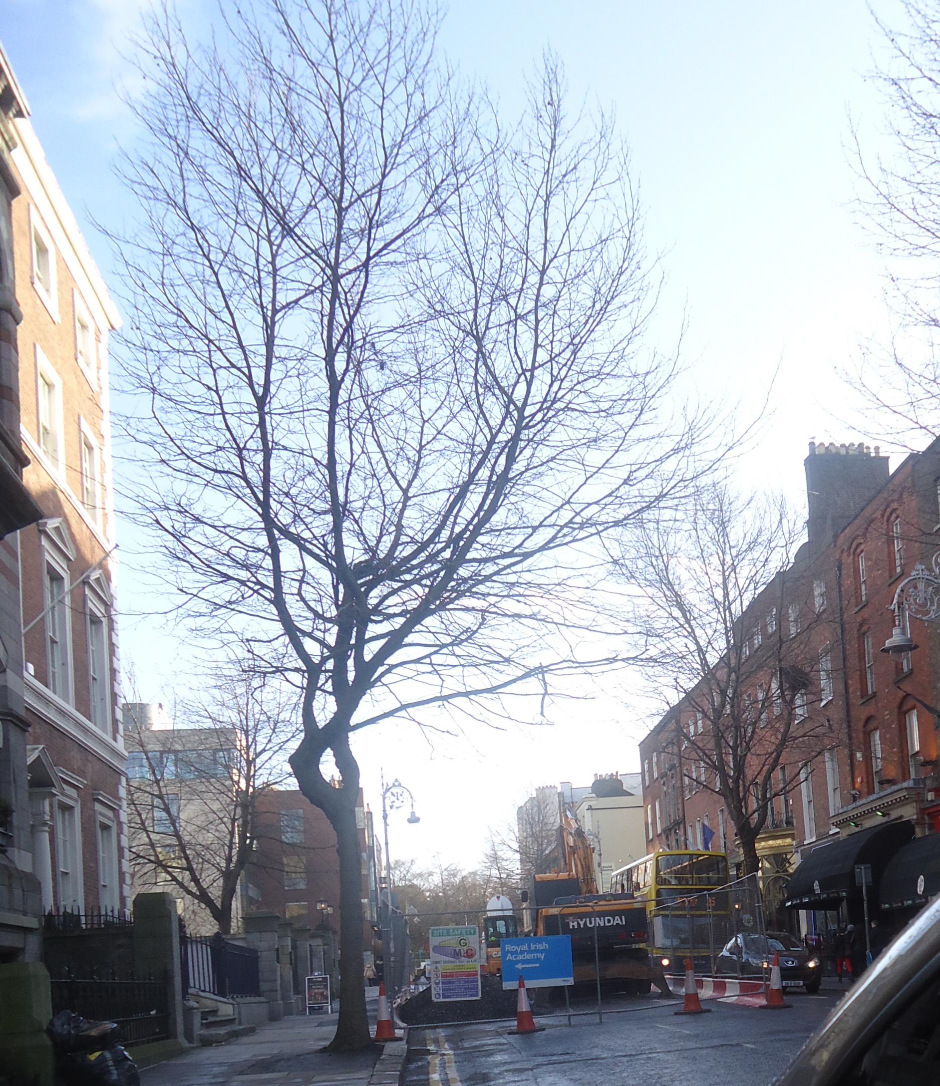 Dawson Street Dublin, Ireland