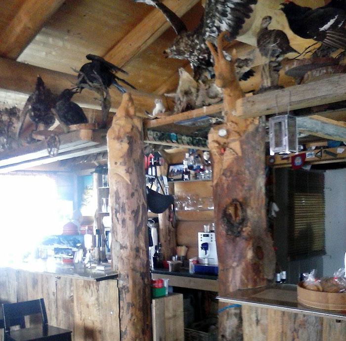 Outdoor style using wood and animals near Wengen Switzerland