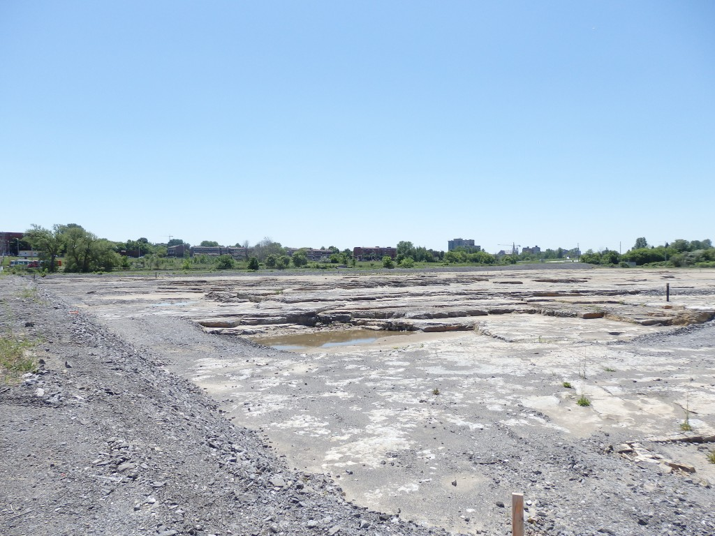 Current LeBreton flats site, sitting empty, Ottawa, Ontario