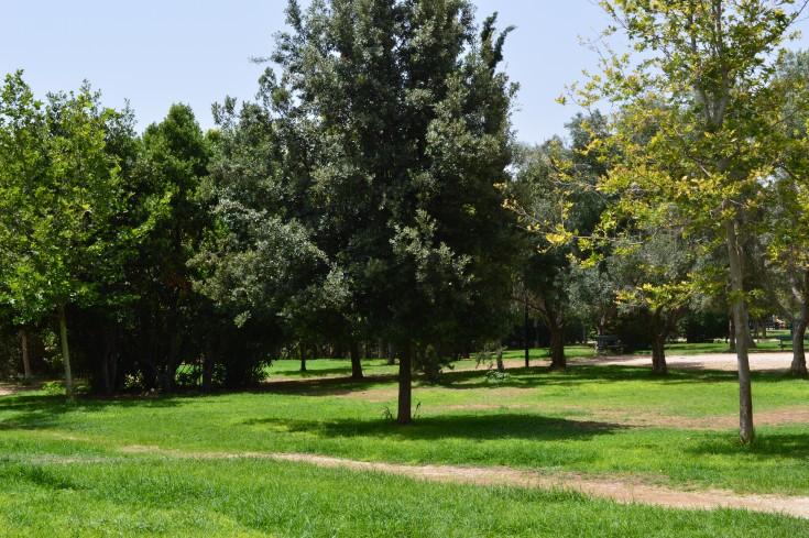 plato's academy park, , Athens, Greece