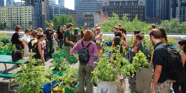 Participants in the Urban Agriculture Summer School in Montreal, Canada. Credit: École d'été sur l'agriculture urbaine.