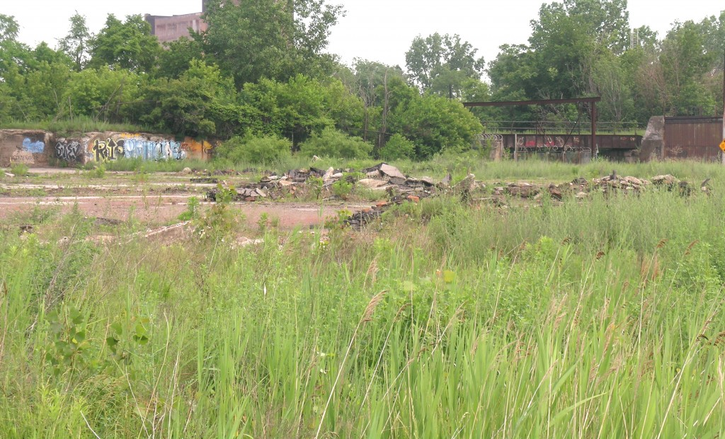Vacant land in Detroit, Michigan