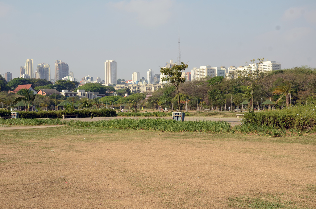 An example of one of the few urban parks located in or near Sao Paulo, Brazil