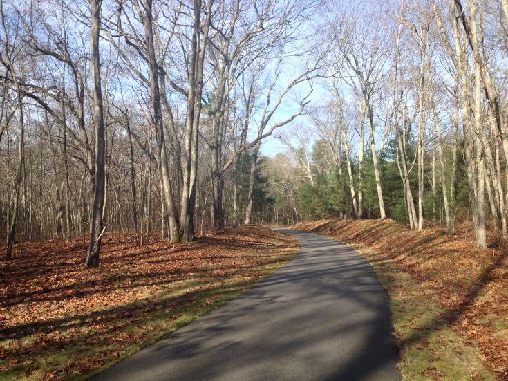 Quinebaug River Trail through trees in the fall, Danielson, Connecticut