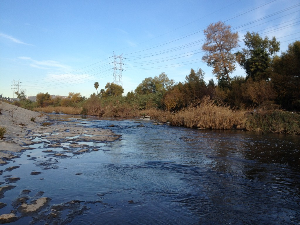 A revitalized part of the Los Angels River, LA River
