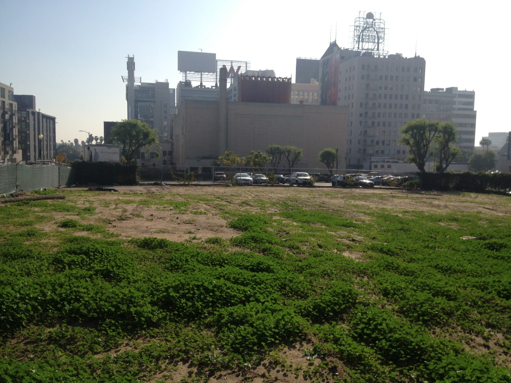 Site excavation in Hollywood to test for active fault lines
