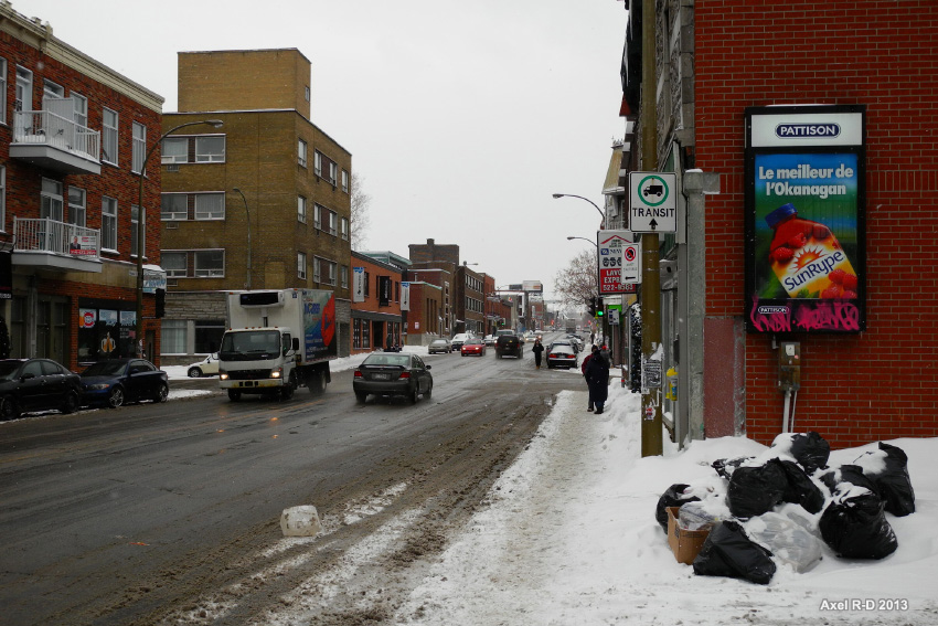 View of cars and sidewalk on Rue Ontario, Montreal, Canada