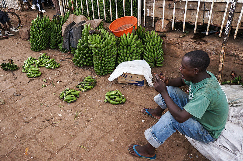 Rwanda, Africa, plantains being sold