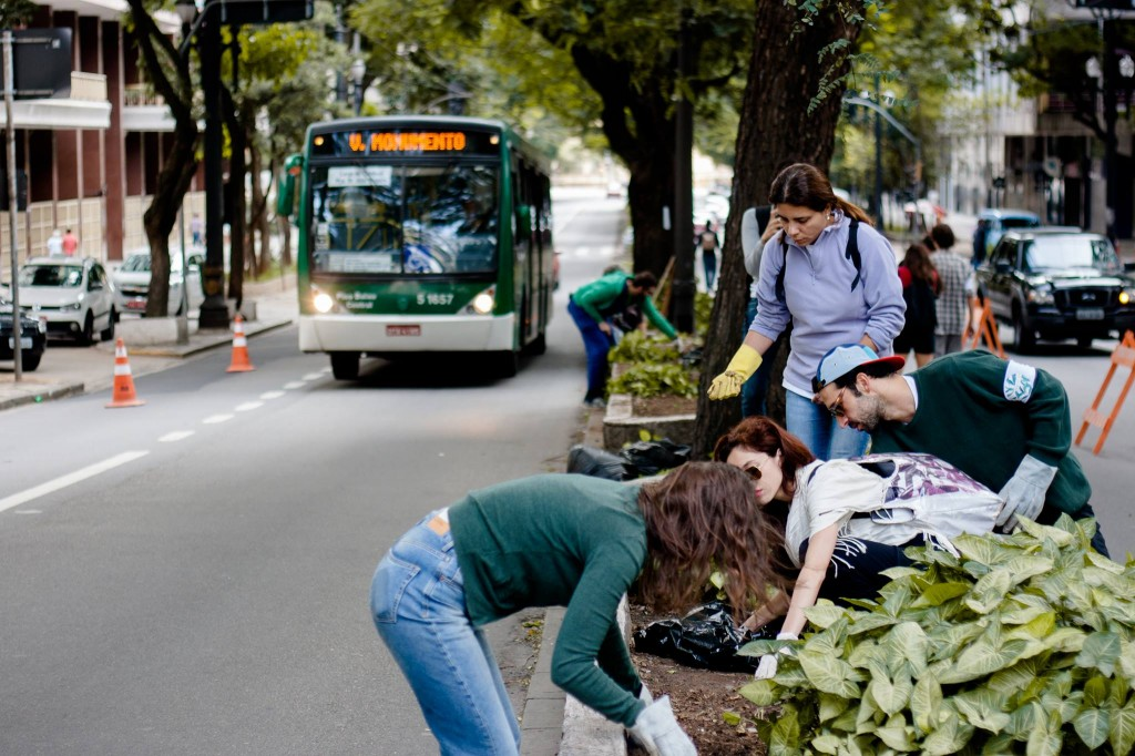 Planting along the center of the avenue, Avenida São Luís in São Paulo, Brazil