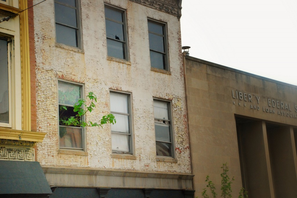 Tree poping out of window od Vacant Building, Baltimore City, Maryland