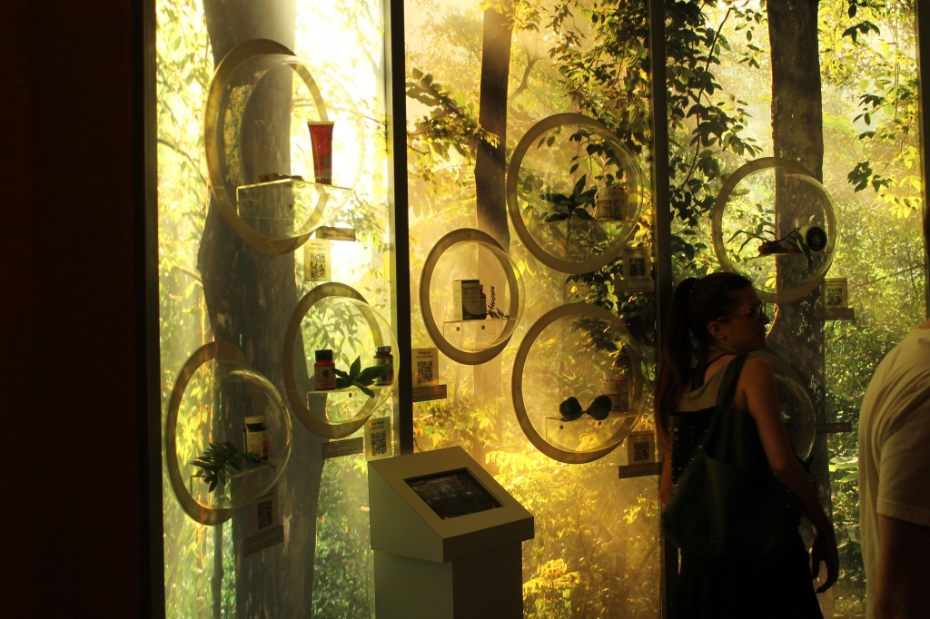 Technology and sustainability display at Expo, Milan, Italy