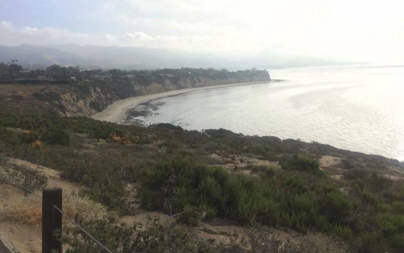 Wildlife Crossing In Santa Monica Mountains To Connect Habitats Across 101 Freeway