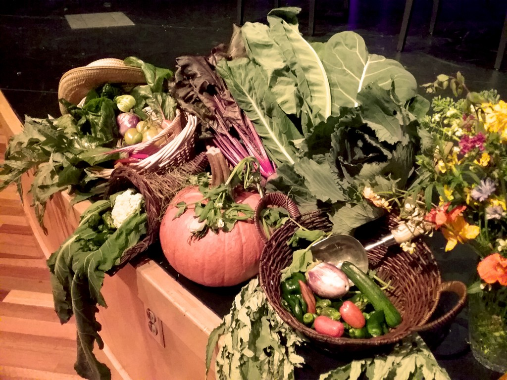 The luscious vegetables, straight from the UC Gill Tract Community Farm