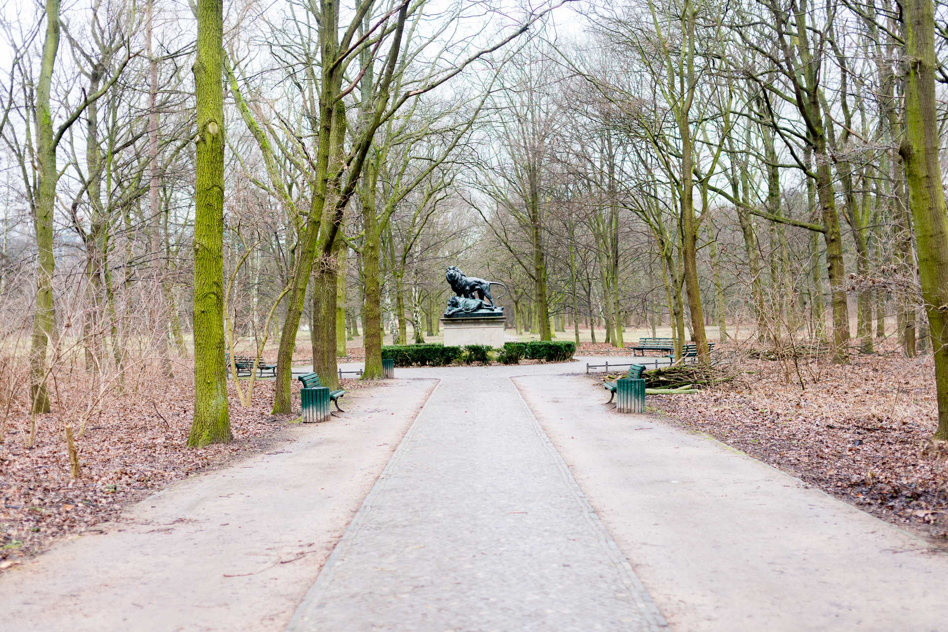 Walking path surrounded by trees that leads to a lion monument in Berlin, Germany's Tiergarten Park