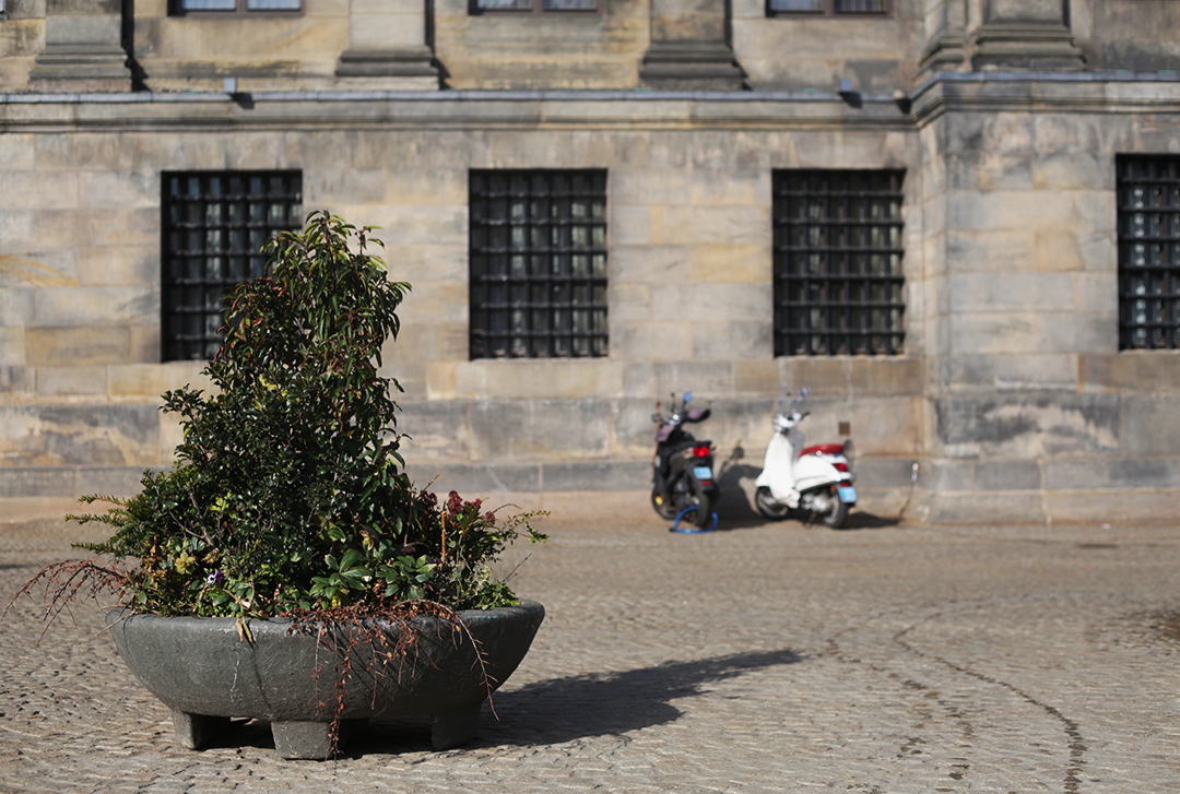 Street furniture such as these decorative planters can be observed in Dam Square intended to secure the space from a hostile vehicle